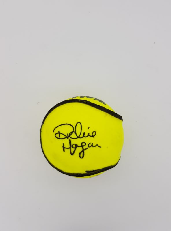 Ritchie Hogan Signature Wall Ball